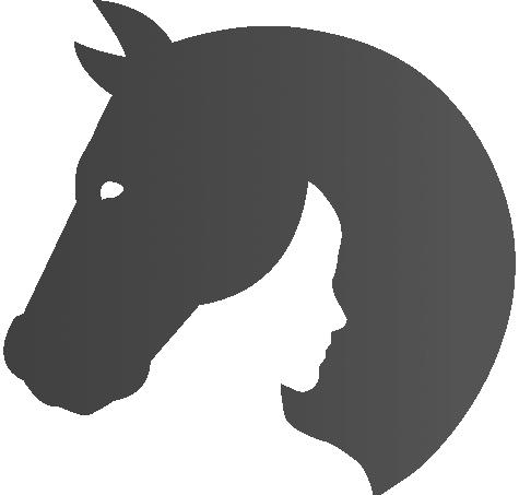 logo 01b notxt gris dense